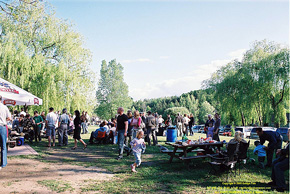 Piknik-126-Fot-Goldyn